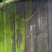 greenoff-fence-clean square