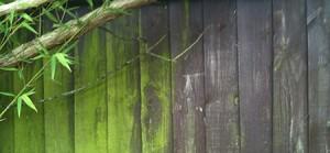 greenoff-fence-clean